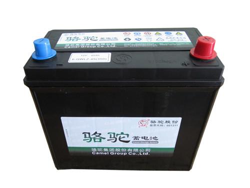 首页 产品中心 骆驼蓄电池:6-qw-45  产品图片 产品简介 汽车免维护